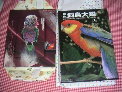 Tanjyoubi_present_nakami