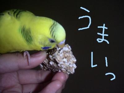 Purintooyatu8