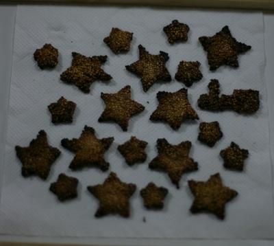 Inkocookie02