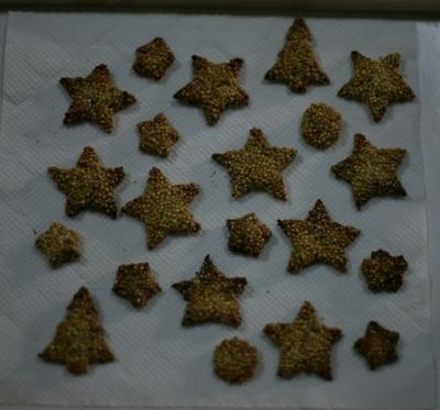 Inkocookie03