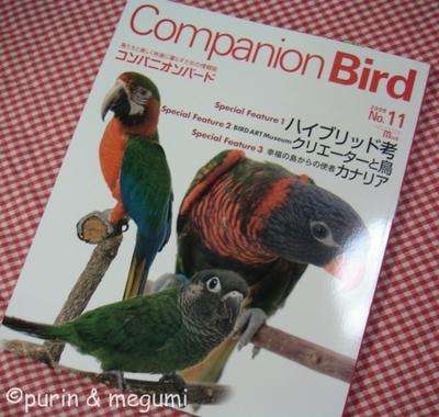 Companionbird